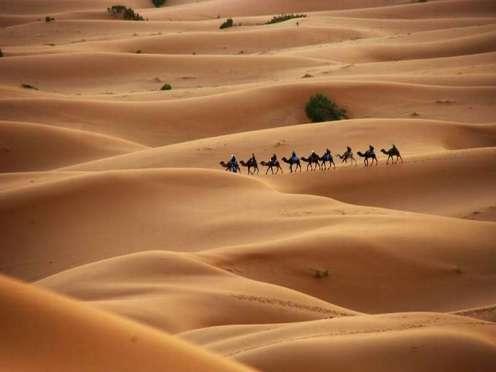 07_tuaregues_berberes_camelos_dunas