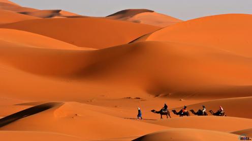 caravan-in-the-desert